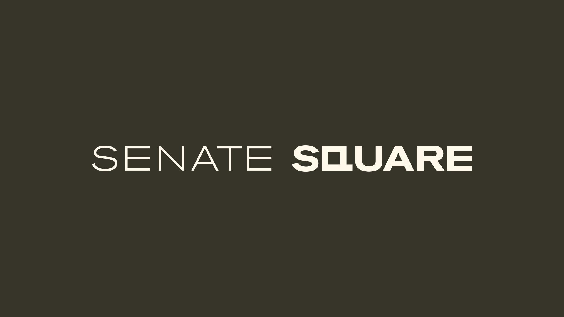 BozSenateSquare-Screens-1080-SCREEN1